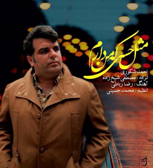 احمد شکوری به نام مثل حسی که من دارم