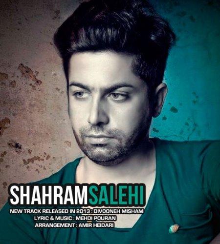 Shahram%20Salehi%20 %20Divooneh%20Misham - Shahram Salehi - Divooneh Misham