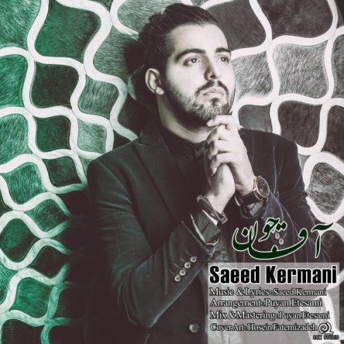 Saeed%20Kermani%20 %20Agha%20Joon - آهنگ سعید کرمانی به نام آقا جون